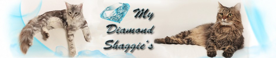 My Diamond Shaggies